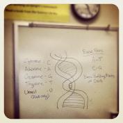 Teacher Tuesday 3
